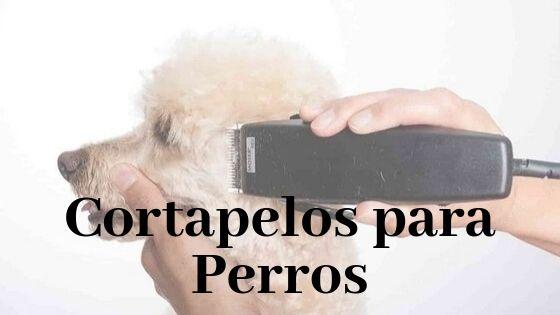 mejores cortapelos para perros